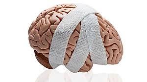 La esclerosis Lateral Amiotrófica, es una enfermedad neurodegenerativa que afecta severamente el sistema nervioso central. Daña principalmente los sistemas neuromusculares al atrofiar sistemáticamente las redes de motoneuronas, esto ocasiona disfunciones orgánicas severas. La degeneración es gradual, pero muy agresiva. Aún no hemos encontrado la cura para dicha enfermedad, pero investigadores y médicos hacen todo lo posible por averiguar el porqué de esta enfermedad y poder erradicarla.