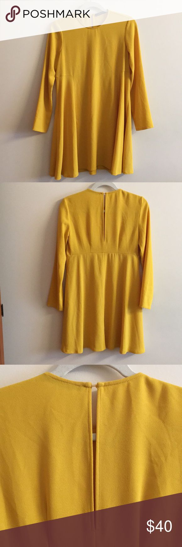 """Adorable Zara mini dress 💛 the cutest yellow baby doll dress from zara 💛 marked small; it has a loose, flowy fit 🌟 i'm 5'5"""" and it hits me about 2"""" above the knee- aka the perfect length. only worn once 💫 no trades ✨ Zara Dresses Mini"""