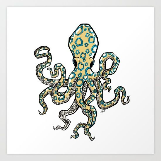 how to draw a blue ringed octopus