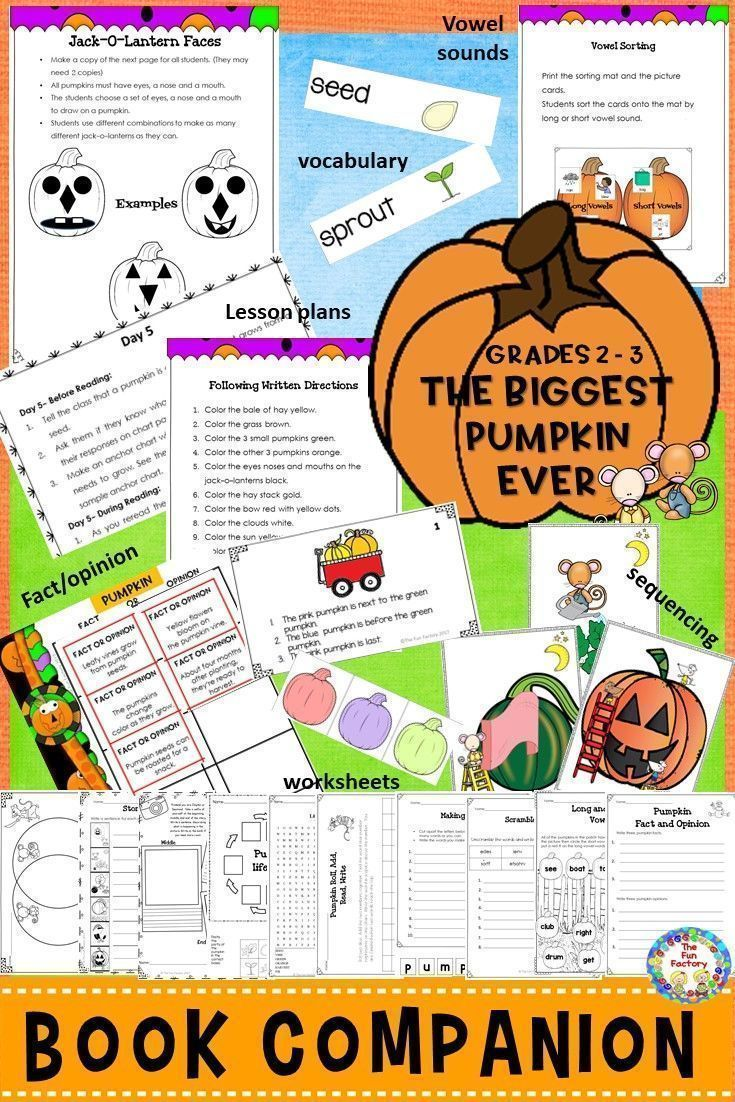 Workbooks willy the wimp worksheets : 26 best Books that teach images on Pinterest | Bedding, Reading ...