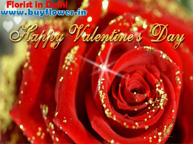 Happy Valentines Day 2016 Send #Flowers, #Sweets, #DryFruits, #Toys To Your Lover By http://www.buyflower.in
