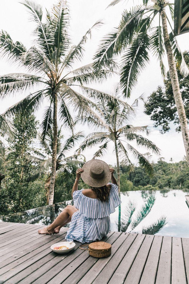 Palm tress