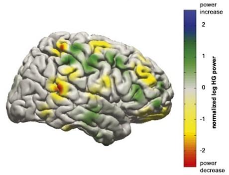http://www.lescienze.it/news/2013/06/13/news/interfaccia_cervello_macchina_apprendimento_mappe_cerebrali-1698228/