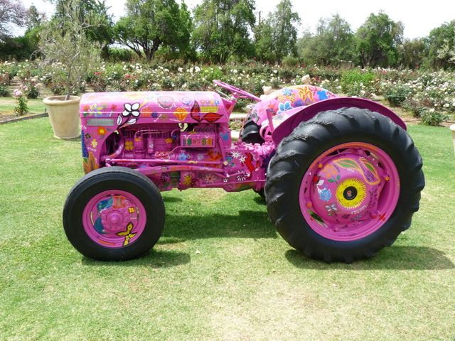 Noooo not pink paint for restoration! :) It's kind of cool I guess. File:Old tractor at Rustons Roses.JPG