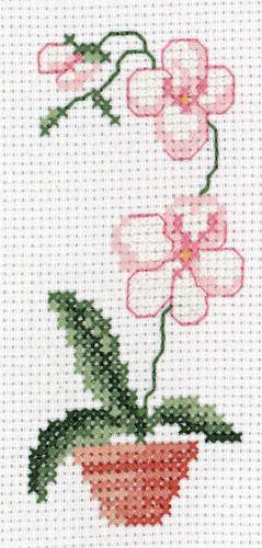 orchidea - punto croce