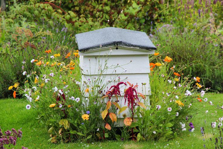 havedagbogen : Houghton Hall Gardens