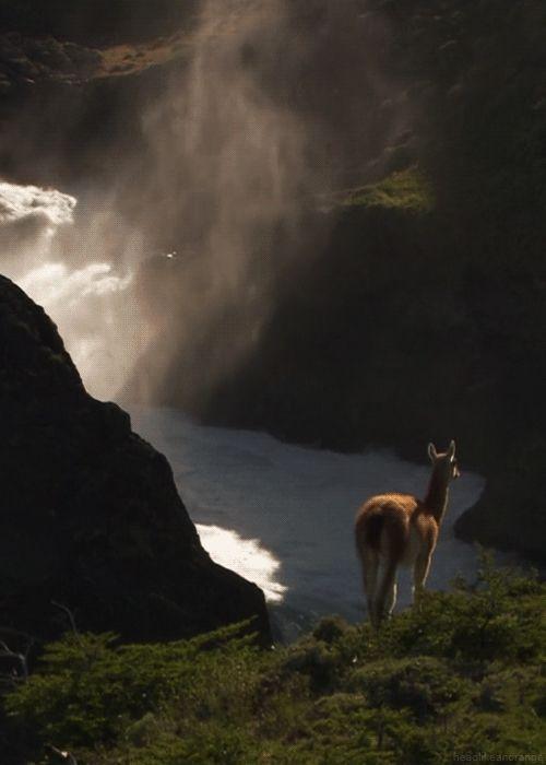 Ожившие пейзажи от блогера Marinusa
