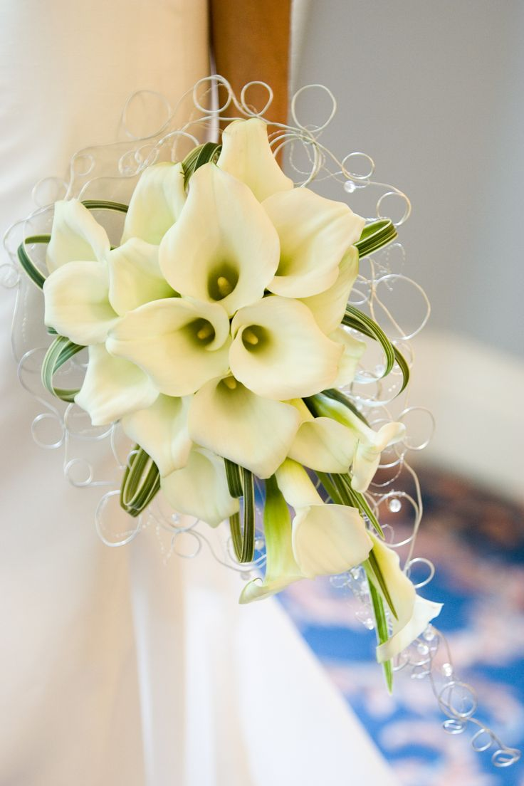 510 best calla bouquetsboutonnieres images on pinterest ideas for white wedding flowers with examples of table centrepieces wedding bouquets buttonholes and venue flower decorations dhlflorist Choice Image