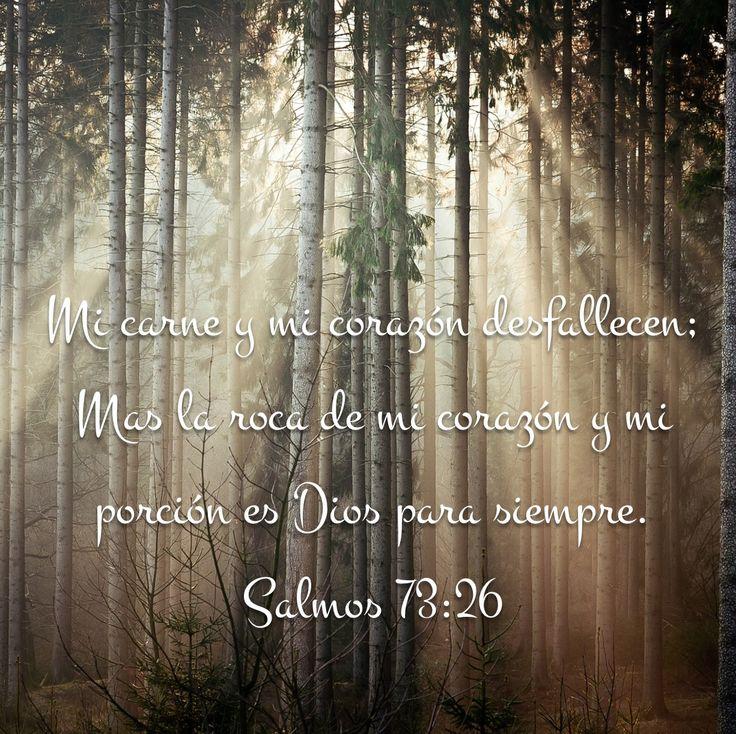 """""""Mi carne y mi corazón desfallecen; Mas la roca de mi corazón y mi porción es Dios para siempre."""" Salmos 73:26 """
