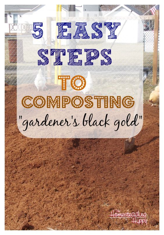 5 easy steps to composting