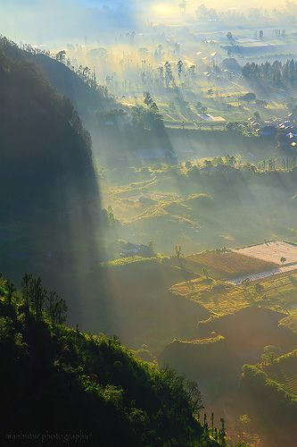 THE FOGY LAND  LOCATION ; BATUR - KINTAMANI - BALI -INDONESIA