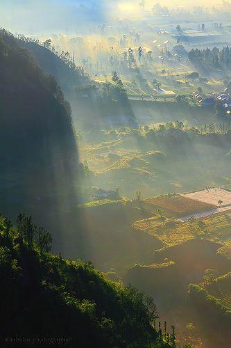 The Foggy Land - Batur - Kintamani, Bali, Indonesia