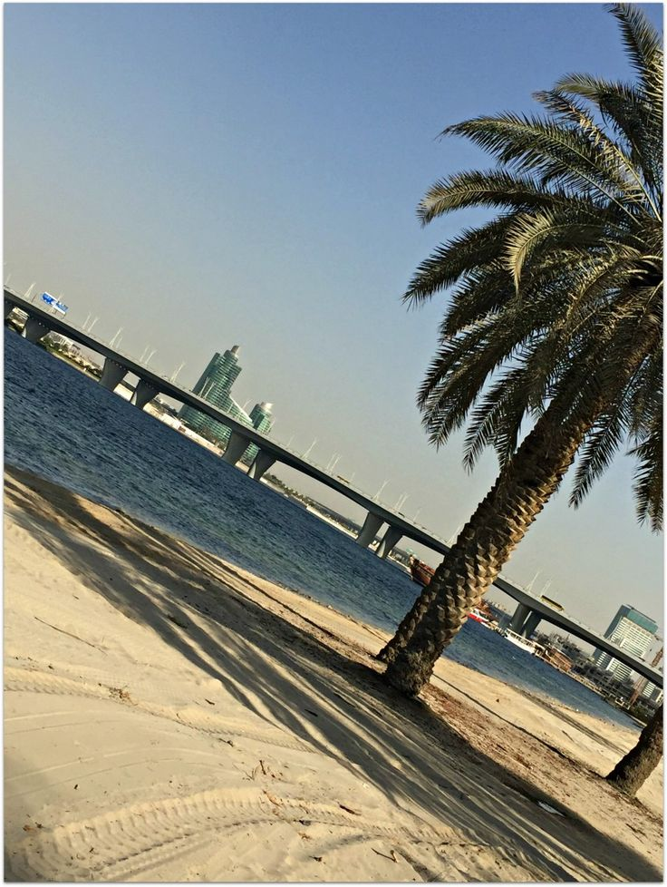 6 Must Do Things in Dubai with Children
