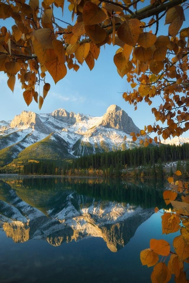 Nature Beautiful Scenery Fall Immersion In The Canadian Rockies Canmore Al Beautiful Photography Nature Fall Photography Nature Fall Landscape Photography