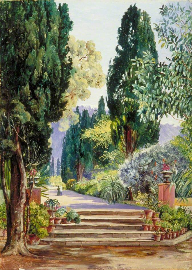 A View of the Botanic Garden, Teneriffe by Marianne North ...