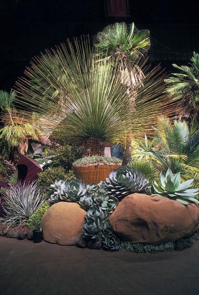 New Entrance Garden at UC Botanical Garden: An Explosion of Arid Exotica