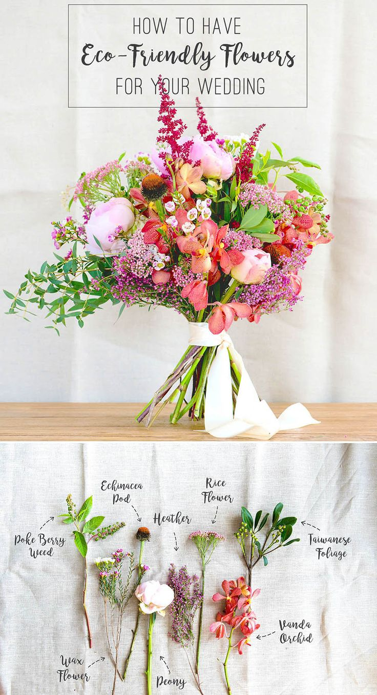 How to Have Eco-Friendly Flowers for Your Wedding // Green wedding tips and inspiration {Facebook and Instagram: The Wedding Scoop}