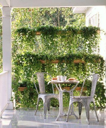 Zielona ściana - Taras Balkon