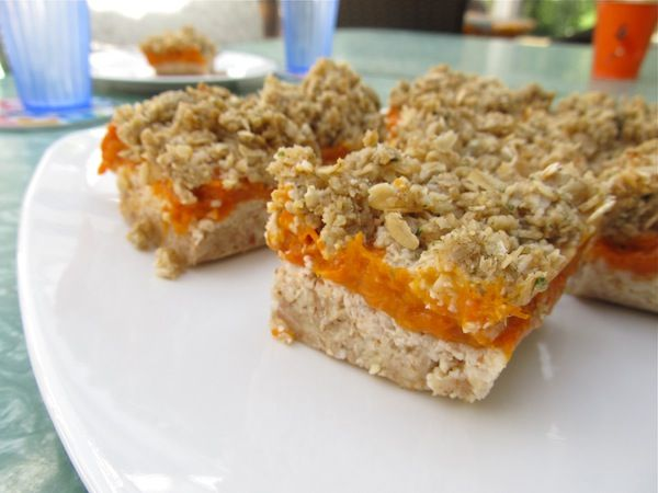 Apricot Squares (DF, GF, Sugar Free, Soy Free, Vegan). Grab the recipe at http://www.beyondthepeel.net/2012/07/apricot-squares-df-gf-sugar-free-soy-free-vegan-raw-options.html