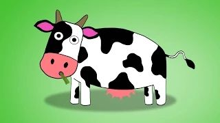 toddler videos about animals - YouTube