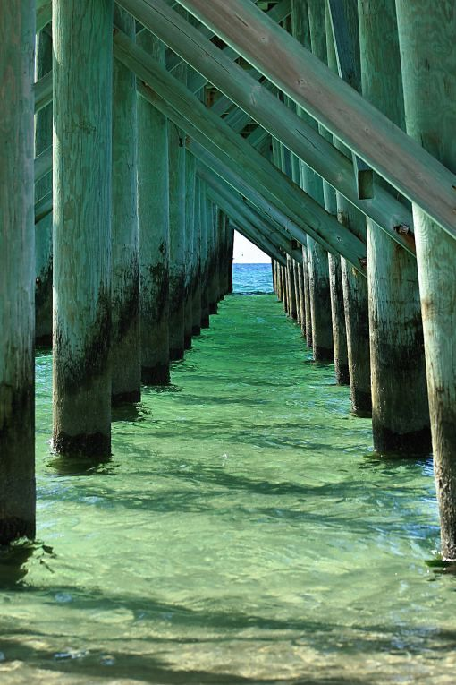 Great photo of emerald green water under pier by Nature Photographer Teddy Meeks