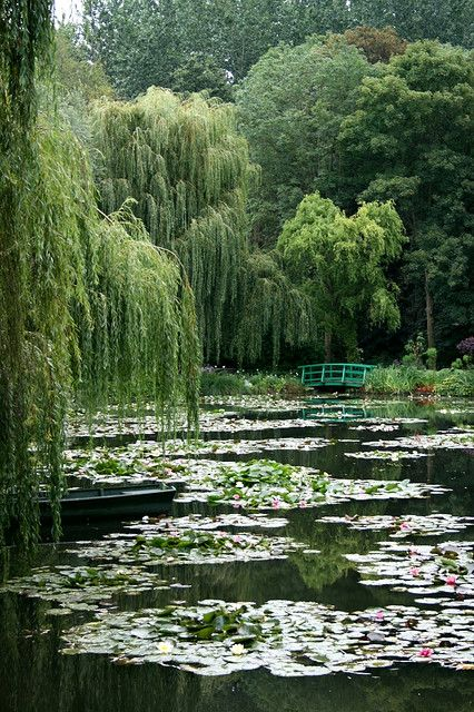 Monets garden and Japanese style footbridge that inspired amazing famous paintings, Giverny