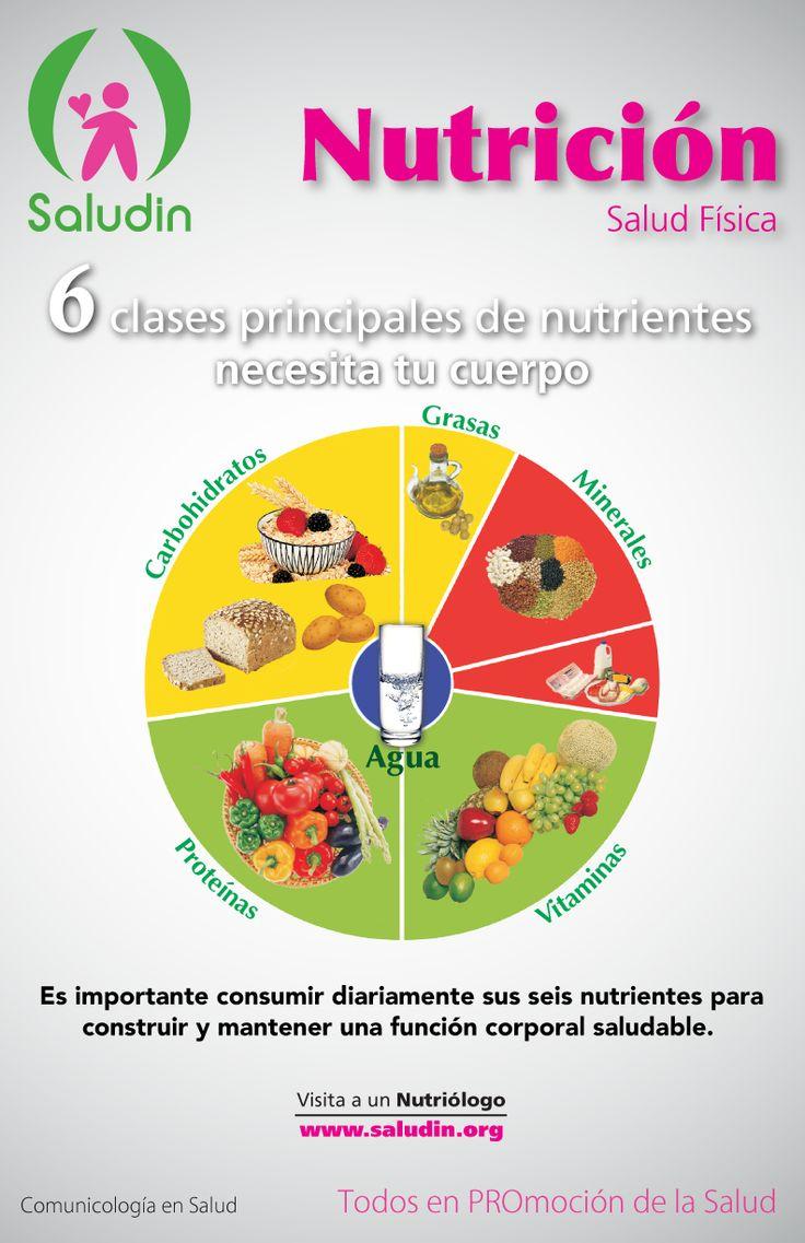 #Cartel #Nutricion 6 clases principales de nutrientes necesita tu cuerpo. Vitaminas, Minerales, Grasas, Carbohidratos, Proteínas y Agua.