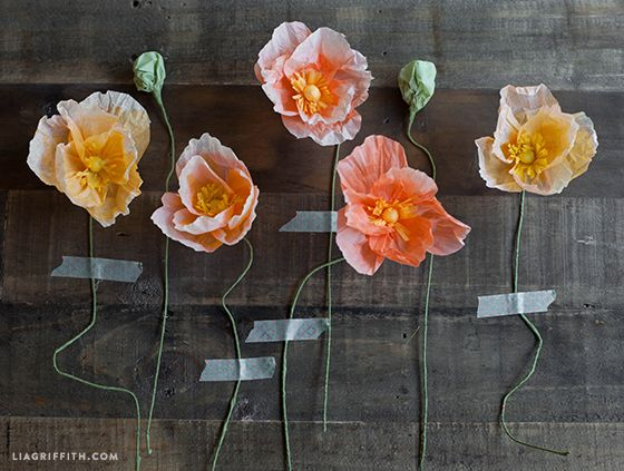 how to make poppies out of tissue paper
