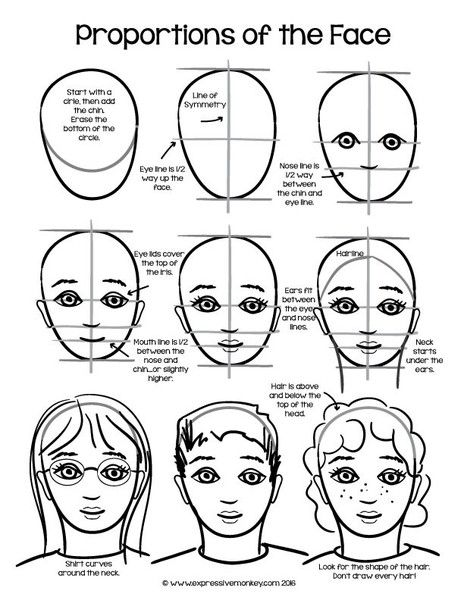 Drawing faces proportions