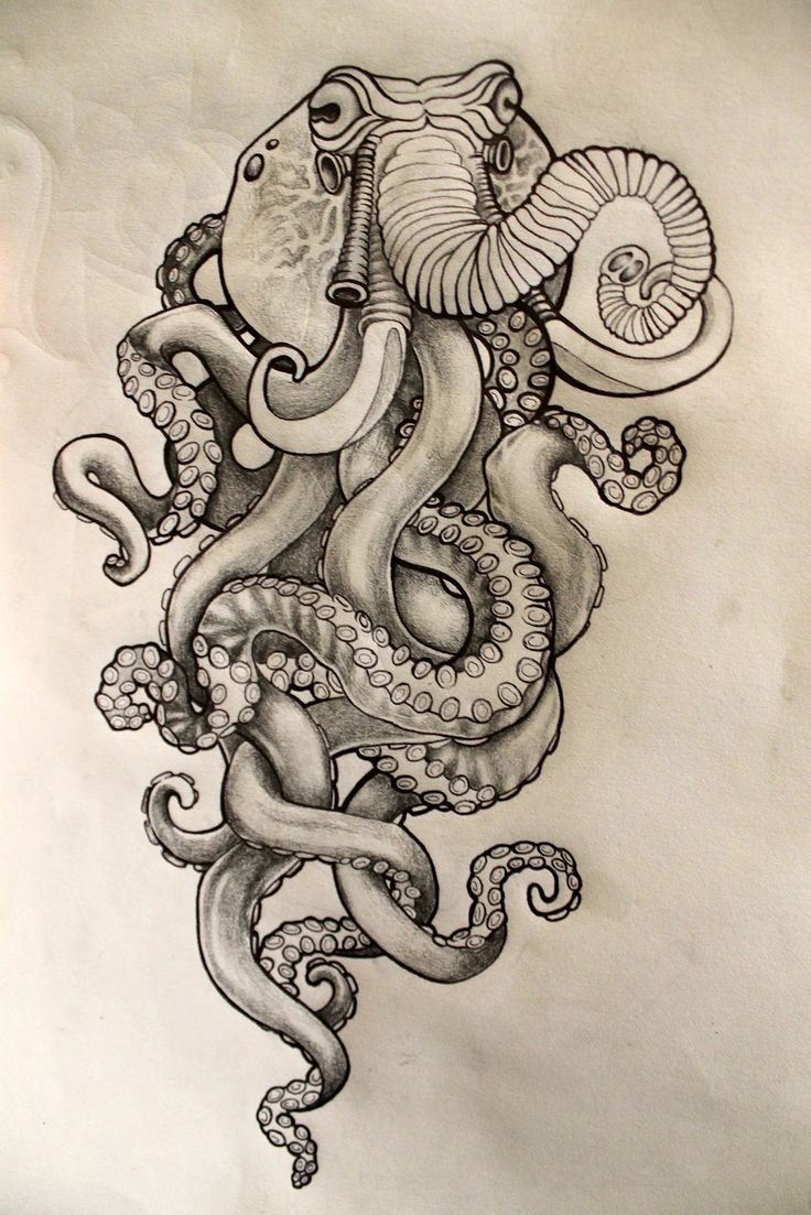46 best tattoo images on Pinterest Octopus tattoos Drawings and