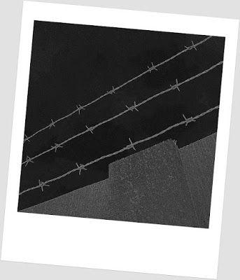 Portfolio Multimedeia: The Wall. Muuri
