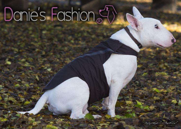 Fekete kutyaing http://daniesfashion.com/