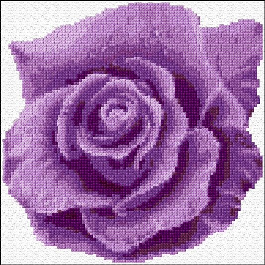 Purple Rose Colour Cross Stitch Chart