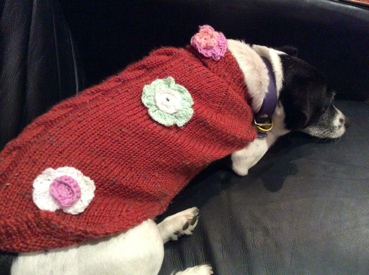 Woollen jumper for Nui