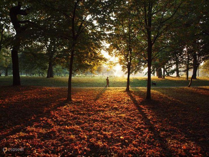 Сефтон-парк – #Великобритания #Англия #Ливерпуль (#GB_ENG) Где в Ливерпуле можно прекрасно развеяться и расслабиться, если не в пабе? В Sefton Park!  ↳ http://ru.esosedi.org/GB/ENG/1000228194/sefton_park/