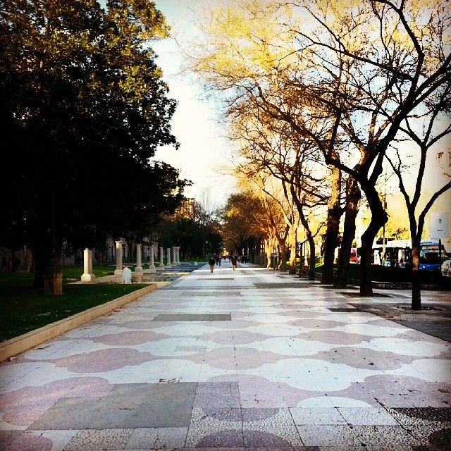 Paseo de Recoletos. Madrid  http://instagram.com/californisima