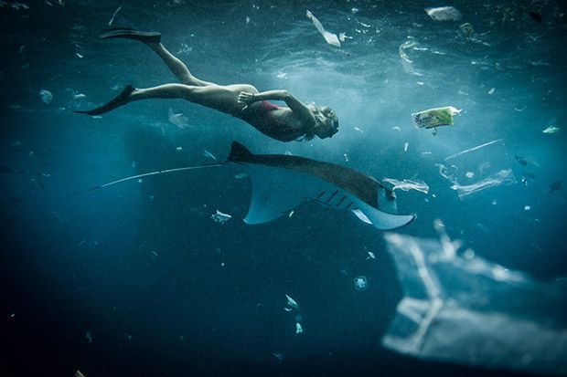 Diver and Manta Ray Swim Through a Flurry of Plastic Pollution. THIS is just PART of what happens when waste isn't disposed of responsibly...