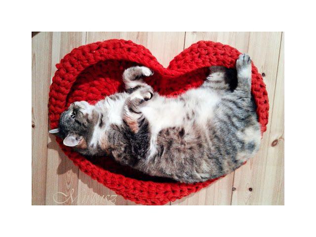 Mirtusz : Bár legközelebb lennék macska!...