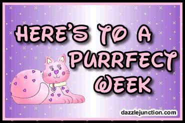 Here's to a purrfect week - perfect - cat kitten kitty - Monday - glitter - gif