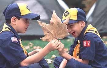 Helpful site about autistic scouts: http://scoutingmagazine.org/issues/0609/a-boys.html
