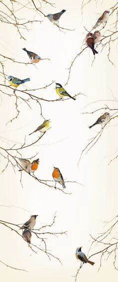bird wallpaper would love to use this in a guest bathroom