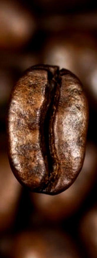 ☕ Coffee bean ☕ Long pin