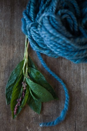 177 Best Natural Dyeing Images On Pinterest Natural