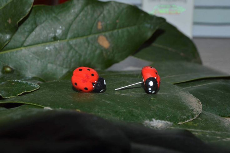 A personal favorite from my Etsy shop https://www.etsy.com/listing/517394585/ladybug-handmade-earrings