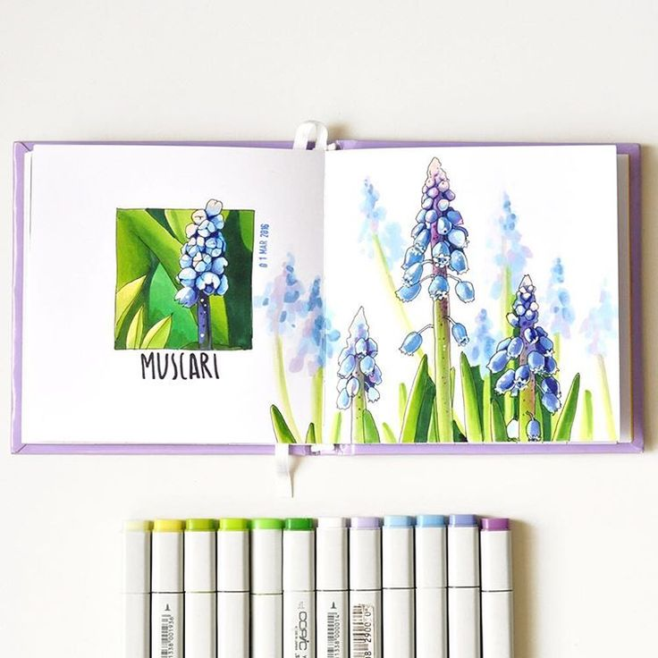 Hello Spring #sketch #sketchaday #sketchbook #copic #markers #botanicalillustration #botanicalart