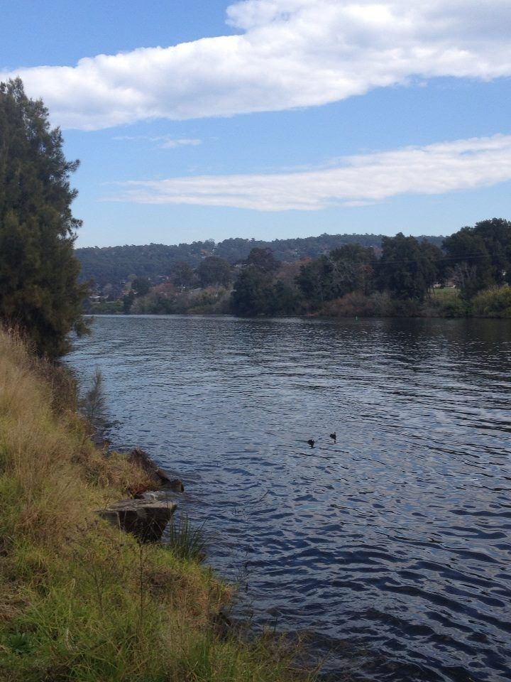 Along the banks of the Nepean River, Penrith NSW