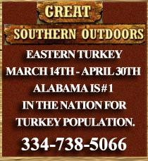 Come Hunt Alabama's Big Birds | Eastern Turkey  March 14th - April 30th Alabama is # 1 in the nation for Turkey Population Great Southern Outdoors Limits Turkey Hunts to 12 Hunters per season, resulting in a 90+% success rate and all birds harvested weighing over 20 pounds.