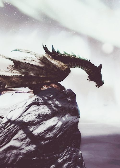 """THERE BE DRAGONS HERE"" --- Dragons don't exist, & many believe they've never existed. But why? What's behind the legend? Let's investigate the facts of history, science & dragon lore, with a dose of cautious optimism."