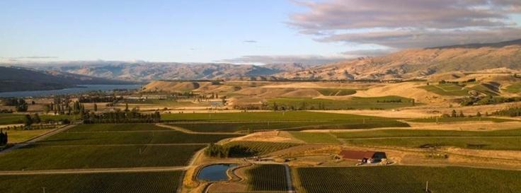 Amisfield Wine Company Winery & Bistro
