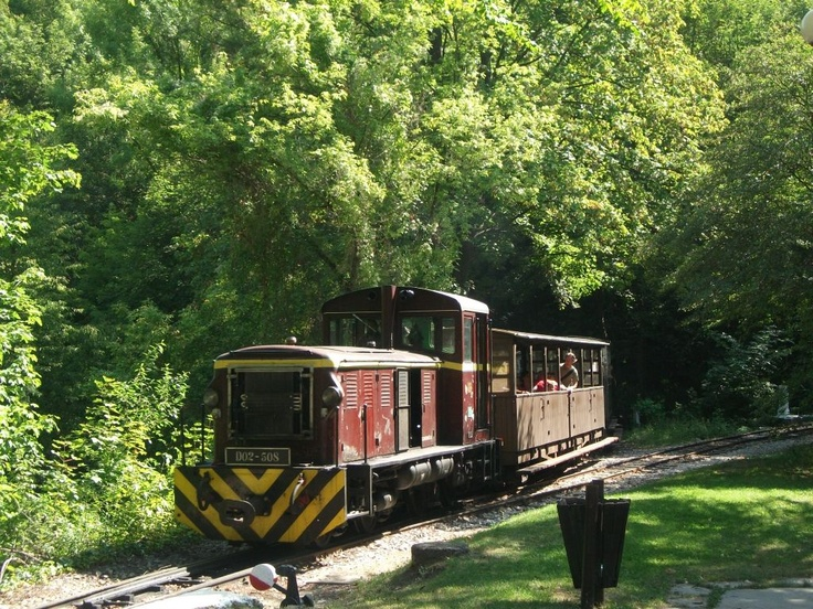 Narrow gauge train arrives